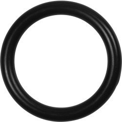 O-Ring Dichtung